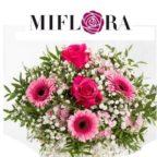 Miflora_Strauss_Clooney IBB