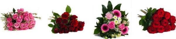Blumeideal