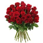 30-rote-rosen