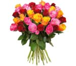 Strauß mit 41 bunten Rosen für 22,98€ inkl. Versand