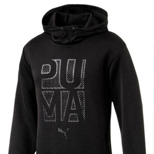 Puma_03