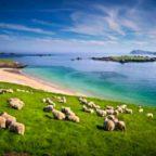 Irland Rundreise