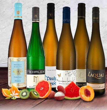 Riesling Wein Probierpaket