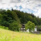 Bayerischer_Wald_08