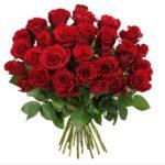 rote Rosen Spezial