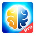 Denkspiele Pro 2