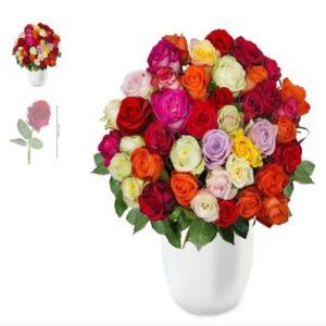 Rainbow Pretty Rosen