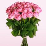 """Miflora: Strauß mit 20 Rosen """"Lovely Pink"""" für 17,90€"""