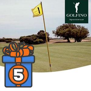 Golfino_Beitrag