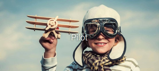 Wingly Pilot