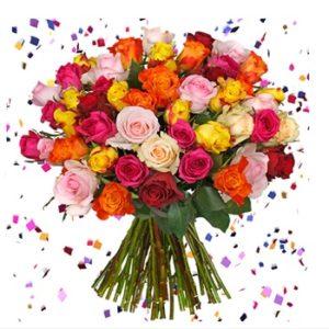 silvesterkracher rosen