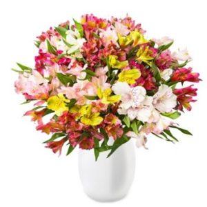 200 Blüten Blumeideal