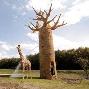 Serengeti_Park_Giraffe