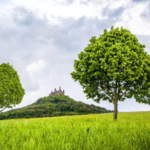 Burg-Hohenzollern