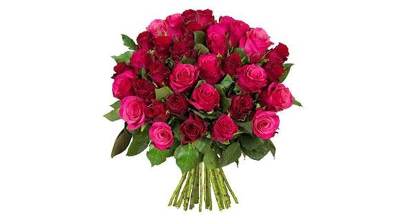 45 Romantic Roses Stiellänge 50cm Für 2498 Inkl Versand