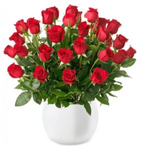 rote rosen classic red 1