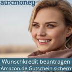 auxmoney_Bild