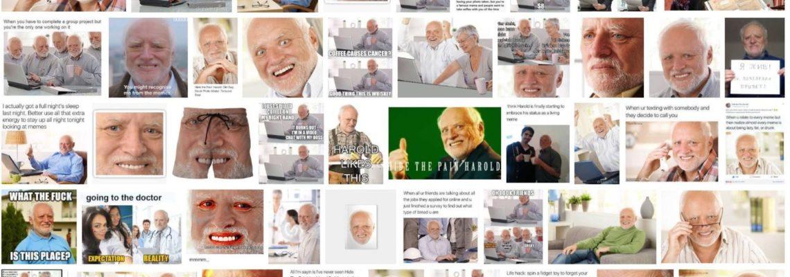 Meme-Kampagne-Harold