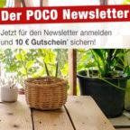 Poco-Newsletter