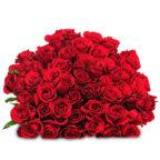 44-rote-rosen