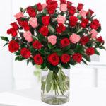 Romantic-Roses