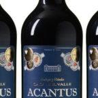 Acantus-Ausschnitt