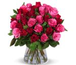 pinke rosen