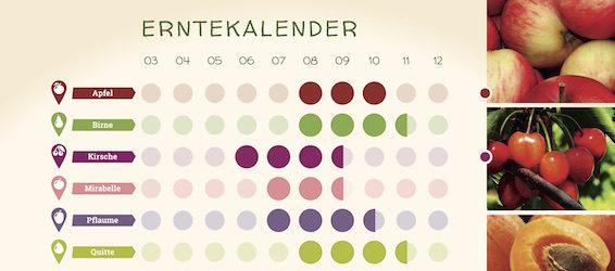 Mundraub_Erntekalender