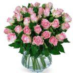 rosefarbene rosen
