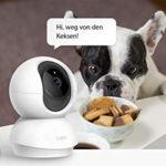 Kamera-und-Hund