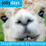 Jollydays: 20% auf stay@home-Events z.B. Live-Interaktion mit Lamas & Alpakas