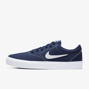 Nike-Skateboard-Schuh-blau
