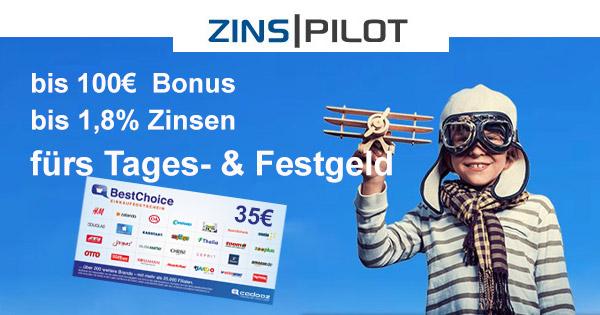Zinspilot-600×315