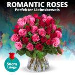 Romatntic-Roses