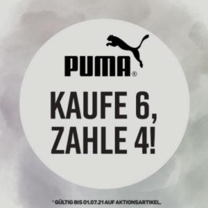 Puma_6fuer4