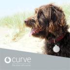 Curve-Tracker-Hund