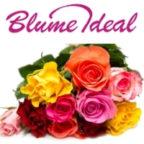 rosen-blume-ideal