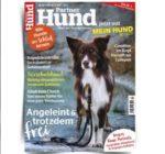 partner_hund