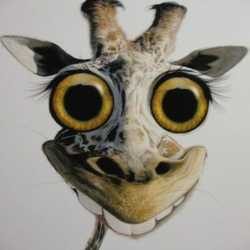 Profilbild von darksky