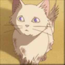 Profilbild von Meow