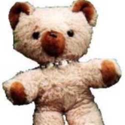 Profilbild von Teddylein