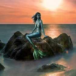 Profilbild von Arielle8868