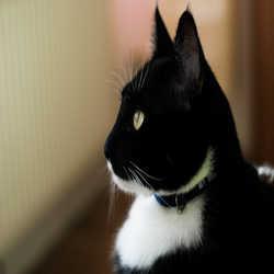 Profilbild von Seli1989