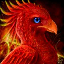 Profilbild von iNSecuRe