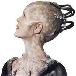 Profilbild von Cybertom3000
