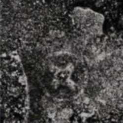 Profilbild von Vril