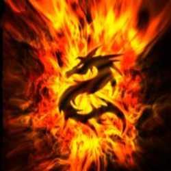 Profilbild von GoldFireDragon