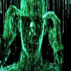 Profilbild von Matrixboy