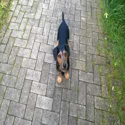 Profilbild von Filou21812