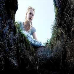 Profilbild von IchbinIch